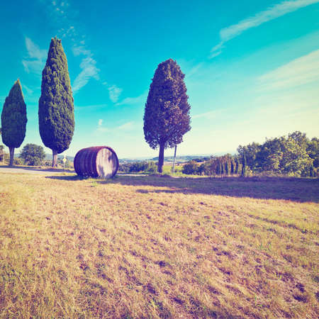 tun: Hill of Tuscany with Barrel in the Chianti Region