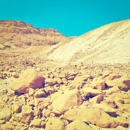 Canyon in the Stony Judean Desert photo