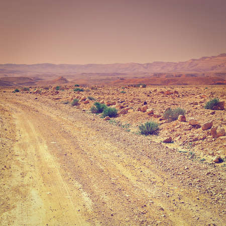 Dirt Road in the Negev Desert in Israel, Sunset, Instagram Effect photo