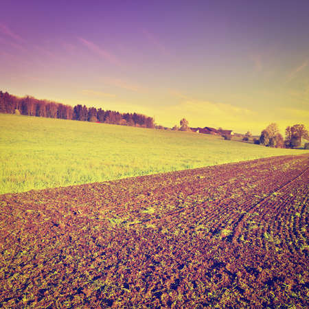 furrow: The Swiss Farmhouse Surrounded by Plowed Fields, Sunrise Stock Photo