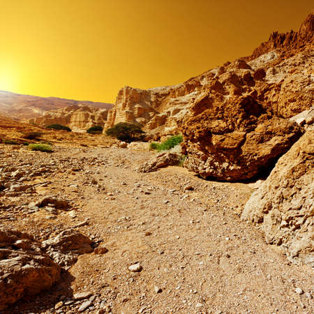 Canyon in the Judean Desert on the West Bank, Sunrise  photo