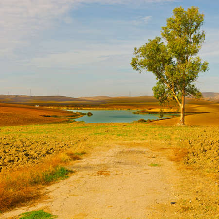 Spanish Landscape with Pond in the Autumn photo