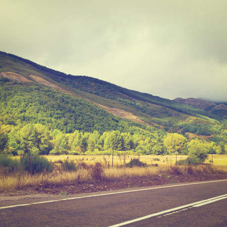 cantabrian:  Paved Road in the Cantabrian Mountain, Spain Stock Photo