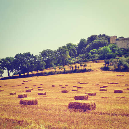 bail: Field of Hay at the Foot of an Ancient Fortress in Tuscany, Italy Stock Photo