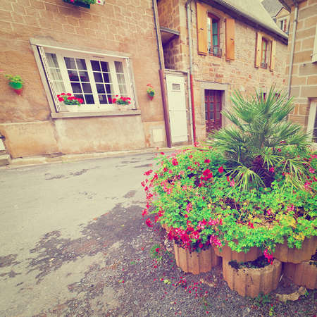 renewed: Flowerbed on a Street of the French City Stock Photo