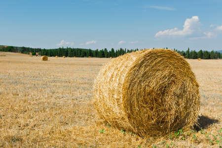 Tuscany Landscape with Many Hay Bales in Italy photo