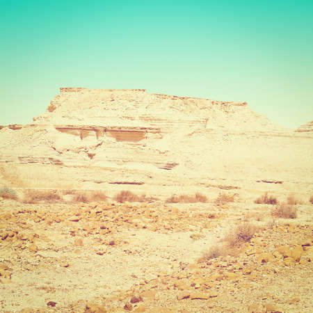 canyon negev: Sandy Canyon of the Negev Desert in Israel,