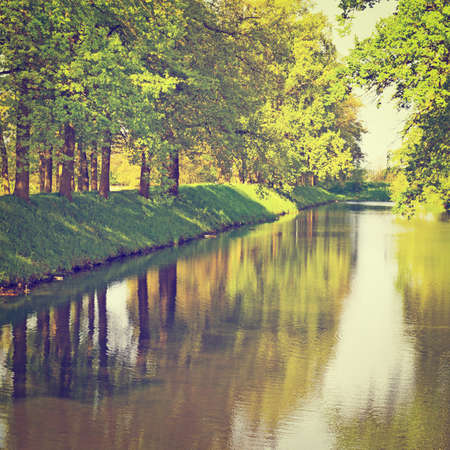 greenwood: Greenwood on the Canal Bank in the Netherlands,  Stock Photo
