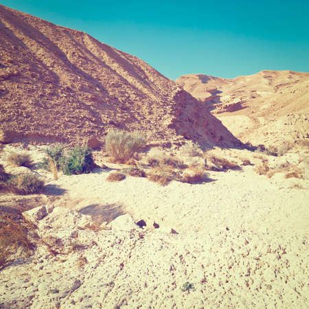 canyon negev: Canyon of the Negev Desert in Israel, Instagram Effect
