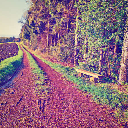 furrow: Dirt Road between Plowed Field and Forest in Swiss Alps, Instagram Effect