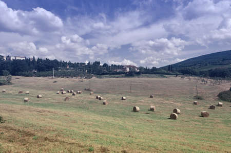 Italy Landscape with Many Hay Bales, Vintage Style Toned Picture photo