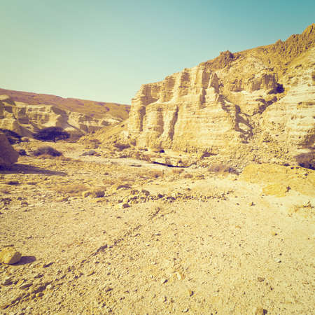 canyon negev: Canyon and Rocky Hills of the Negev Desert in Israel, Instagram Effect
