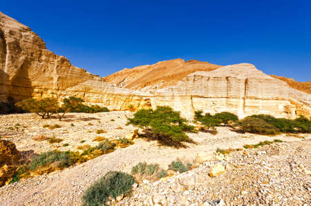 canyon negev: Canyon and Rocky Hills of the Negev Desert in Israel Stock Photo