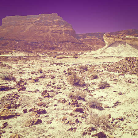 negev: Rocky Hills of the Negev Desert in Israel at Sunset. Stock Photo