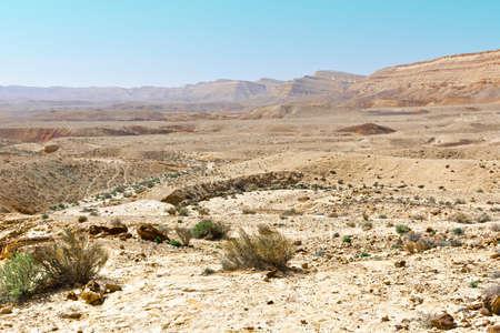 desierto: Canyon en el desierto de Judea en la ribera occidental del r�o Jord�n Foto de archivo