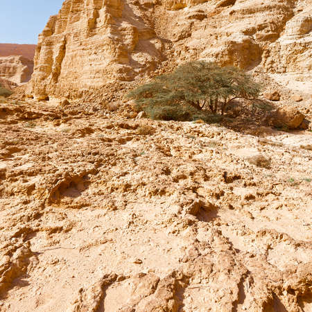 canyon negev: Judean Desert on the West Bank of the Jordan River