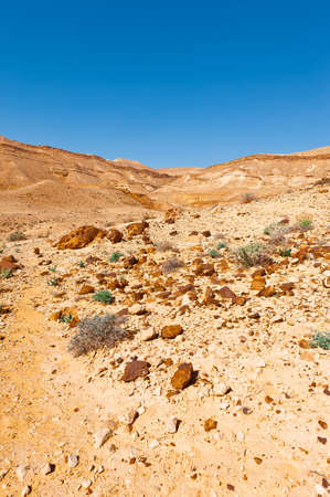 canyon negev: Rocky Hills of the Negev Desert in Israel