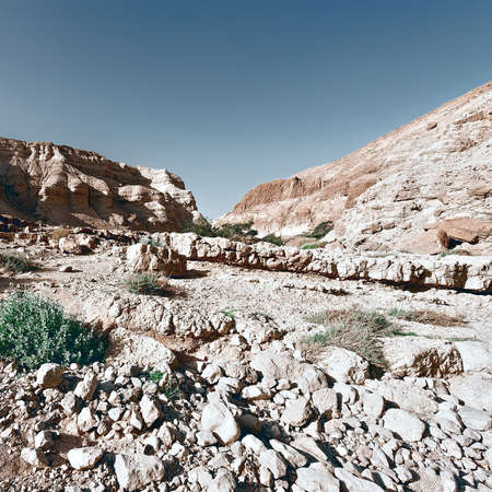 west bank: Desert on the West Bank of the Jordan River, Vintage Style Toned Picture Stock Photo