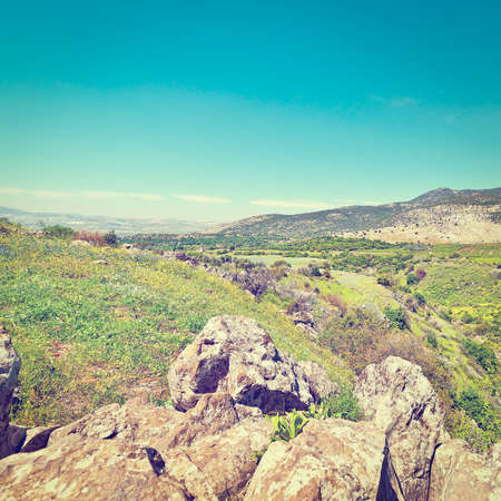 israel agriculture: Golan Heights in the Spring