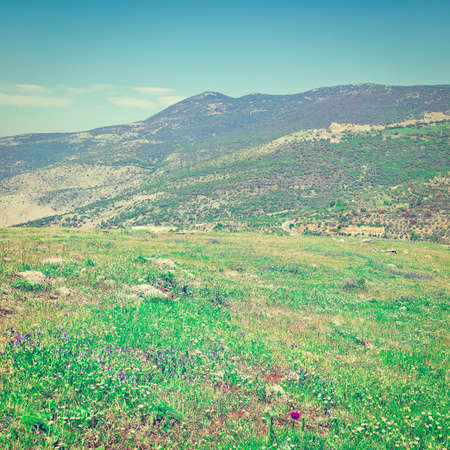 heights: Golan Heights in the Spring