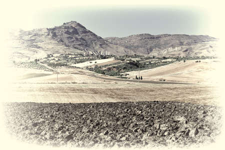 olive groves: Olive Groves and Plowed Sloping Hills of Sicily in Spring, Retro Image Filtered Style