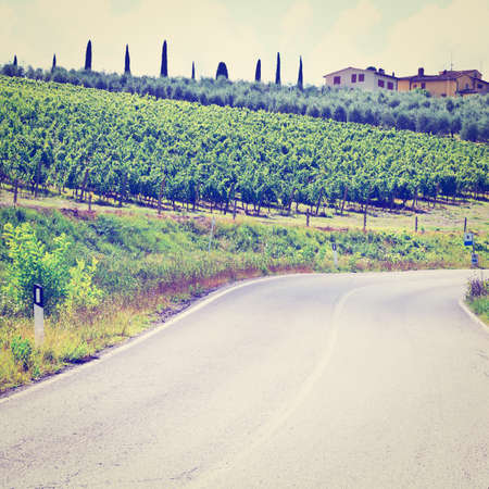 olive groves: Italian Farmhouse near the Asphalt Road Surrounded by Vineyards, Olive Groves and Cypress Alleys