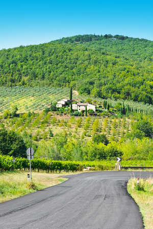 olive groves: Italian Farmhouse near the Road Surrounded by Vineyards, Olive Groves and Cypress Alleys