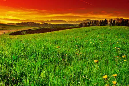spring season: Pasture on the Background of Snow-capped Alps in Switzerland at Sunset