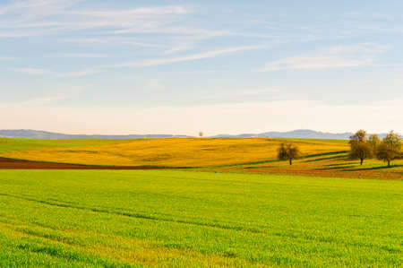 green meadows: Green Meadows and Plowed Fields on the Hills of Switzerland
