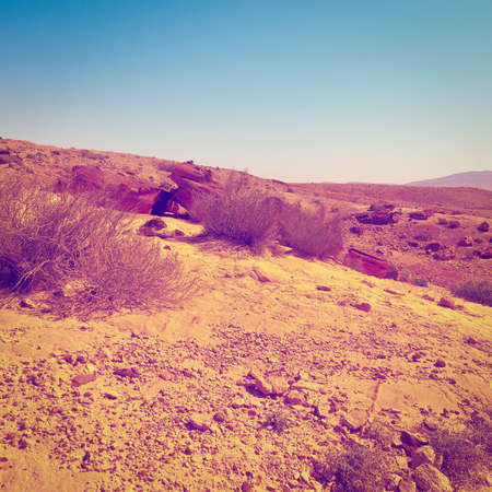 nature reserves of israel: Rocky Hills of the Negev Desert in Israel, Vintage Style Toned Picture Stock Photo