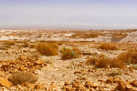 west bank: Judean Desert on the West Bank of the Jordan River