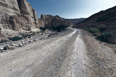 Landweg in de woestijn van Judea op de Westelijke Jordaanoever, vintage stijl getinte foto Stockfoto