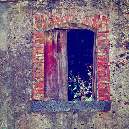 dilapidated: Window of Dilapidated Houses Decorated with Wild Plants in Sicily, Instagram Effect