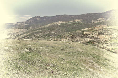 golan: Golan Heights in the Spring, Retro Image Filtered Style