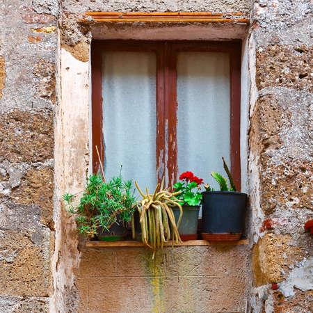 resplendence: Italian Window Decorated with Fresh Flowers