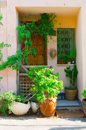 resplendence: Window and Door Decorated with Plant in Tel Aviv