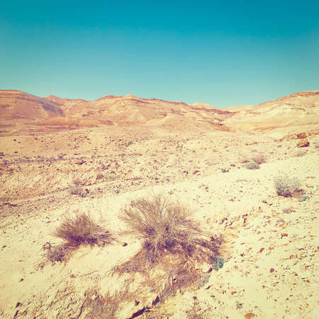 negev: Rocky Hills of the Negev Desert in Israel,  Stock Photo