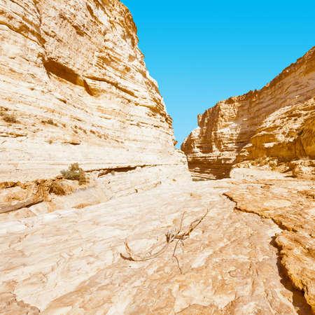canyon negev: Canyon En Avedat of the Negev Desert in Israel