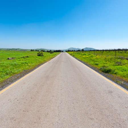 golan: Asphalt Road in the Golan Heights