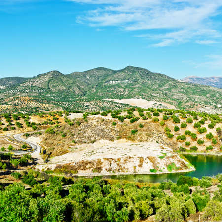 olive groves: Pond for Irrigation among Olive Groves and Plowed Sloping Hills of Spain in the Autumn