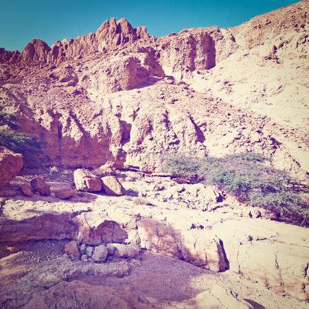 judean desert: Canyon in the Judean Desert in Spring, Instagram Effect Stock Photo