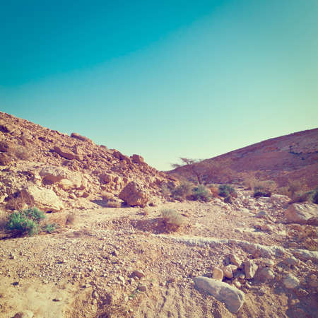 negev: Rocky Hills of the Negev Desert in Israel,  Effect