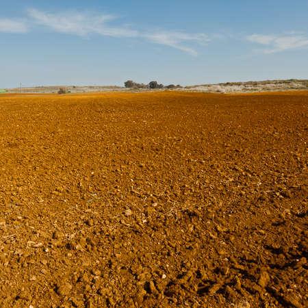 agricultura: Los campos arados en Israel