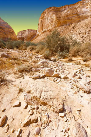 canyon negev: Canyon En Avedat of the Negev Desert in Israel at Sunset