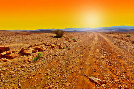 nature reserves of israel: Dirt Road in the Rocky Hills of the Negev Desert in Israel at Sunset
