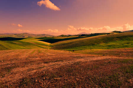 hill: Wheat Fields on the Hills of Sicily at Sunset