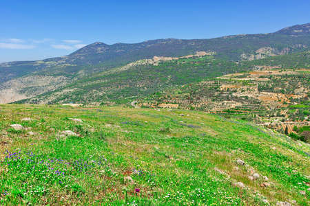 in the heights: Golan Heights in the Spring