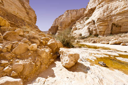 canyon negev: Canyon En Avedat of the Negev Desert in Israel