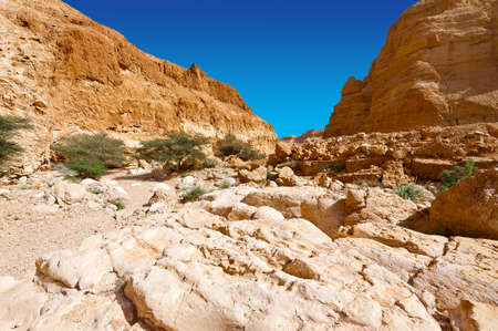 and israel: Rocky Hills of the Negev Desert in Israel