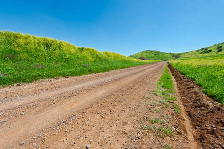 israel agriculture: Dirt Road between Green Fields of the Golan Heights in Israel
